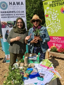 Herts Asian Womens Herb Garden